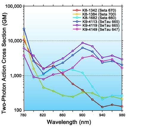 two photon cross section 2 photon microscopy dyes fluorophores luminophores price