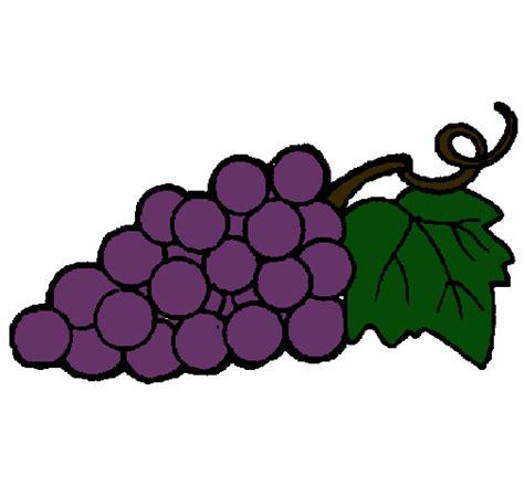 imagenes animadas sobre uvas dibujo de racimo pintado por uvas en dibujos net el d 237 a 23
