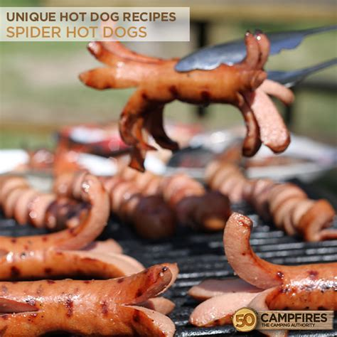 spiral dogs unique recipes spider and spiral dogs 50 cfires
