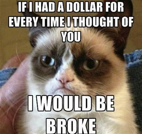 Create A Grumpy Cat Meme - top 25 grumpy cat memes cattime
