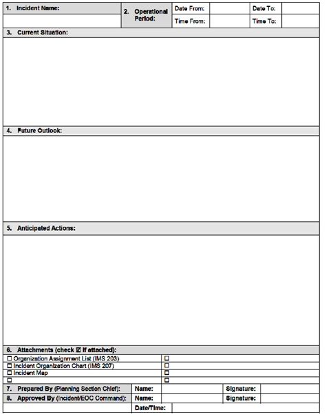incident summary report template forms emergency management ontario
