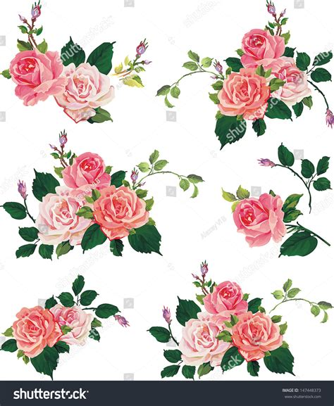 flower design jpg beautiful isolated flowers on white background stock