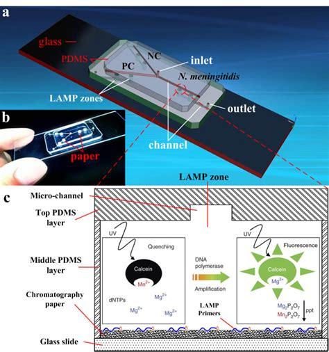hybrid integrated circuit microfluidic chips hybrid integrated circuit microfluidic chips 28 images figure 1 microfluidics closes in on