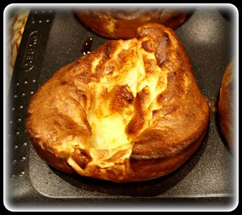 when do yorkies go into heat s veg plot roast beef and pudding