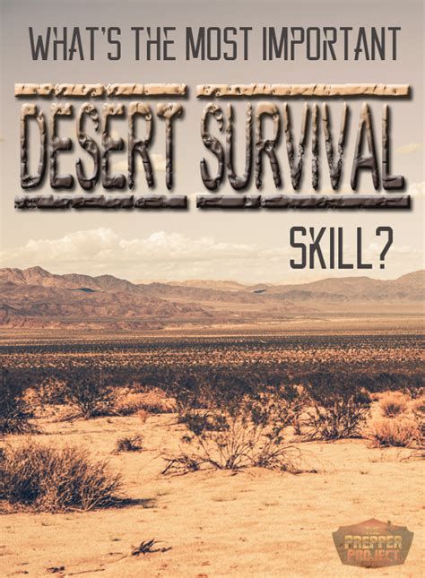 bad neighborhood survival guide critical survival lessons on how to stay safe in dangerous parts of the city books faceoff what s the most important desert survival skill