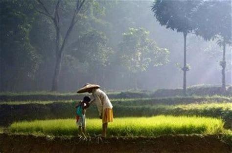 petani dan anak anaknya suara kesatuan pekerja pekerja ktmb