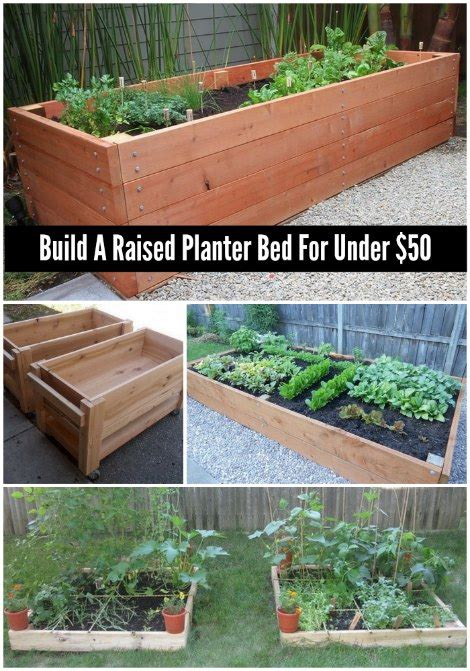 Build A Raised Planter by How To Build A Raised Planter Bed For 50