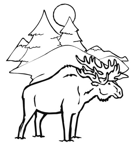 coloring book pages moose moose coloring page az coloring pages