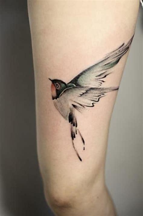 bird tattoo ideas sparrow tattoos best tattoos 2017