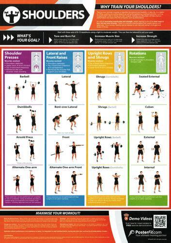 shoulder workout professional fitness posterfit poster w qr code ebay