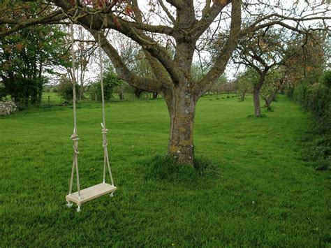 large swing large green lawn combined with big and high trees