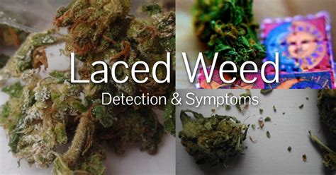 how to if your is 5 tell tale ways to tell if your is laced marijuana guide