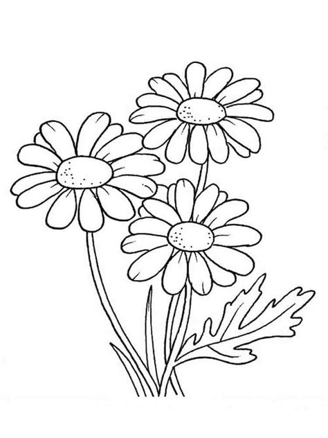 coloring pages of fall flowers 30 printable autumn or fall coloring pages