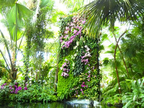 blanc vertical gardens at new york botanical