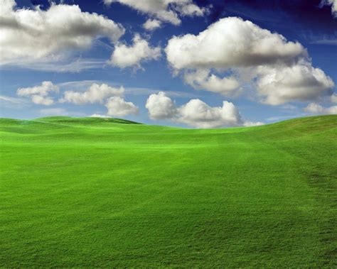 wallpaper of green fields images of green fields zoom wallpapers