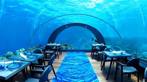 maldives ithaa underwater restaurant overwater villa overwater bungalows and underwater dining in the maldives