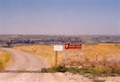 hagerman fossil beds vs idaho hfb nm