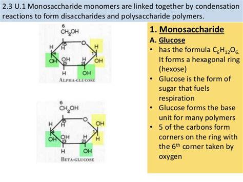 4 2 carbohydrates and lipids 2 3 carbohydrates and lipids