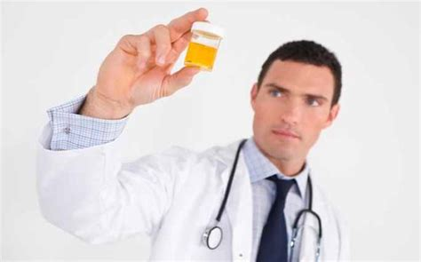 0 3 protein in urine in pregnancy if i protein in my urine what does it