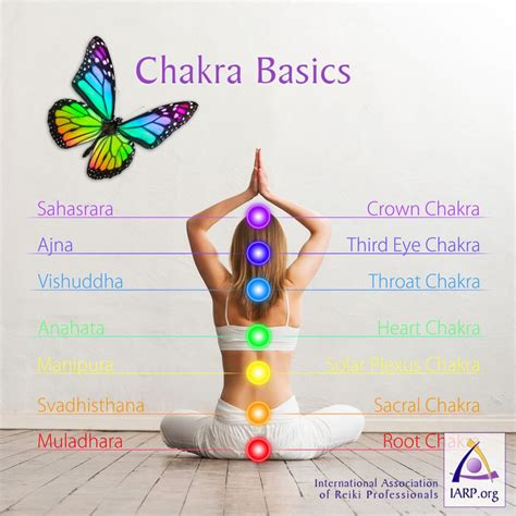 sacral chakra location chakra basics learn what chakras are and their energetic
