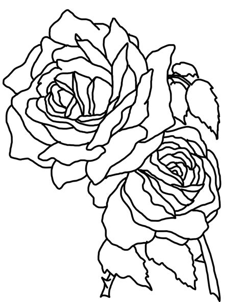 roses coloring pages flower coloring pages