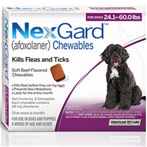 nexgard chewables for dogs nexgard for dogs buy nexgard chewables flea tick for dogs in us