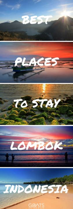 stay  lombok   beaches surfing