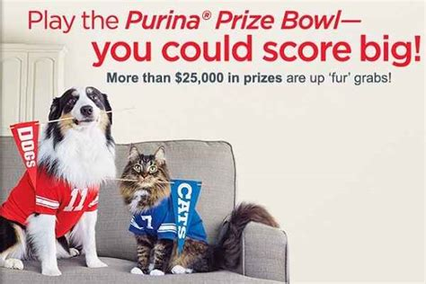 purina prize bowl pure love for pets game sweepstakesbible - Pure Love For Pets Sweepstakes