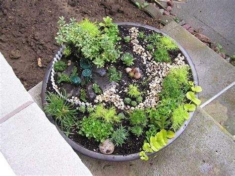 Dijamin Garden Mini Plant Mini Garden plants for miniature gardens garden