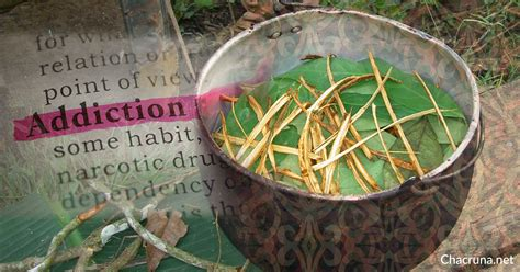 Detox Ayahuasca by Is Ayahuasca An Effective Therapeutic Tool For Addiction