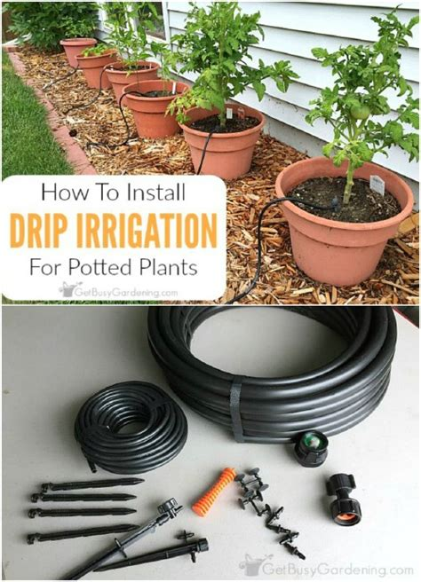diy drip irrigation system for container gardening buddy 16 cheap and easy diy irrigation systems for a self