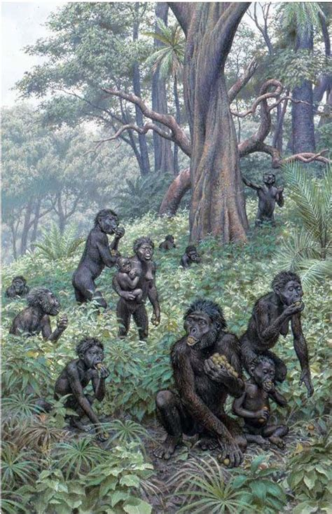 the last human a guide to twenty two species of extinct humans ebook 280 best prehistoric africa images on pinterest