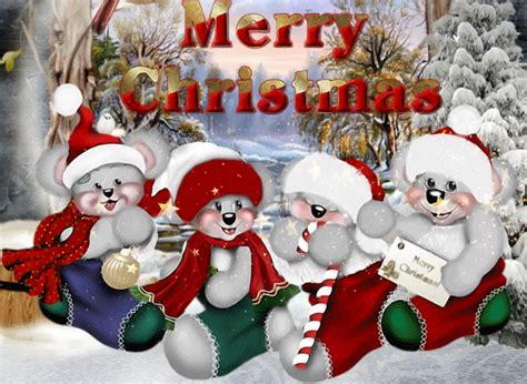 cute merry christmas bears pictures   images  facebook tumblr pinterest  twitter