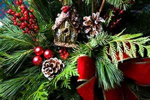 your best poinsettia and christmas store in calgary
