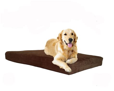 discount dog beds xxl dog beds cheap where to buy elevated dog beds brown