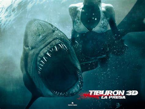 imagenes para fondo de pantalla de tiburones fondos de escritorio de tibur 211 n 3d la presa