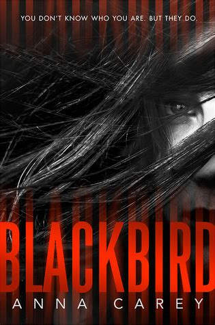 blackbird blackbird 1 by carey reviews