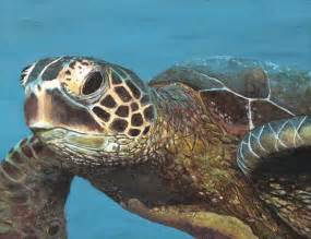 turtles painting turtle painting quot the sea quot by angelo grisafi tattoonow