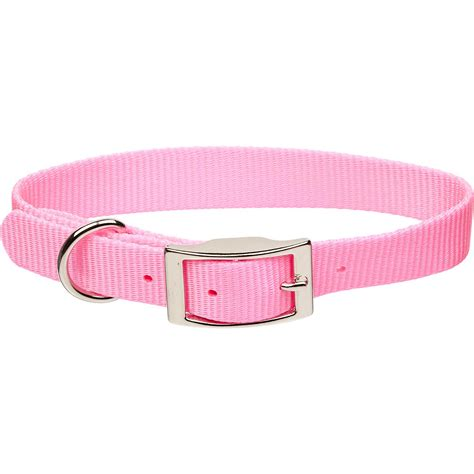 pink collars coastal pet metal buckle personalized collar in bright pink 1 quot width petco