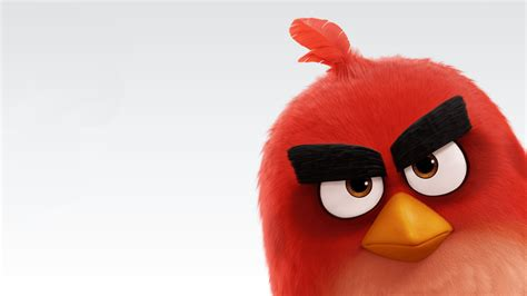 pictures photos from the angry birds movie 2016 imdb the angry birds movie 2016