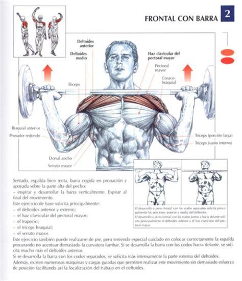 imagenes de ejercicios para workout ejercicios para los pectorales buscar con google