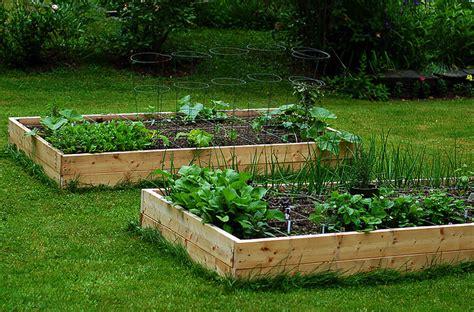 come creare un orto in terrazzo come creare un orto sul terrazzo guide donne