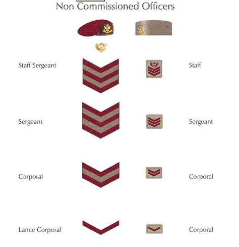 What Is A Non Commissioned Officer by What Is A Non Commissioned Officer Noncommissioned