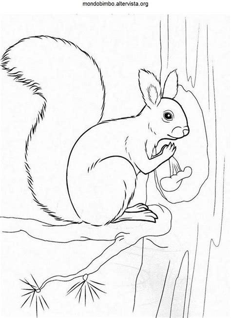 squirrel mario coloring pages flying squirrel mario coloring pages coloring pages