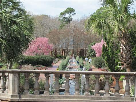 Charleston Botanical Gardens Riverbanks Botanical Gardens Sc Vacations As We See Them