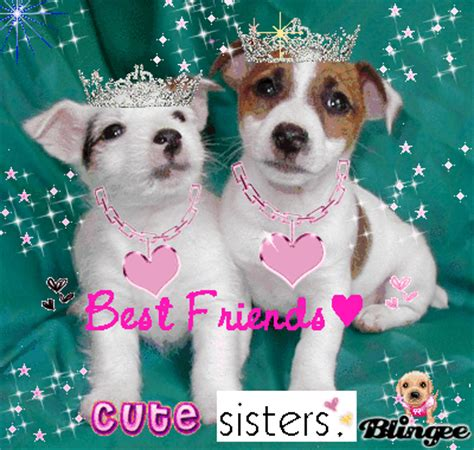 bff puppies bff puppies picture 68947484 blingee