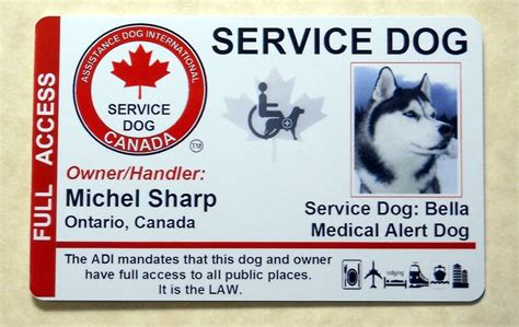 Gift Card Laws Canada - canada adi laws service dog pet id card badge id for
