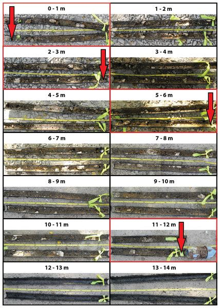Lem Epoxy Pc 11 Marine Usa biofouling of inlet pipes affects water quality in running