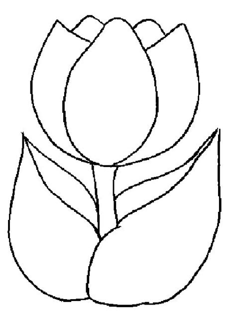 tulip template tulip template printable coloring pages for craft