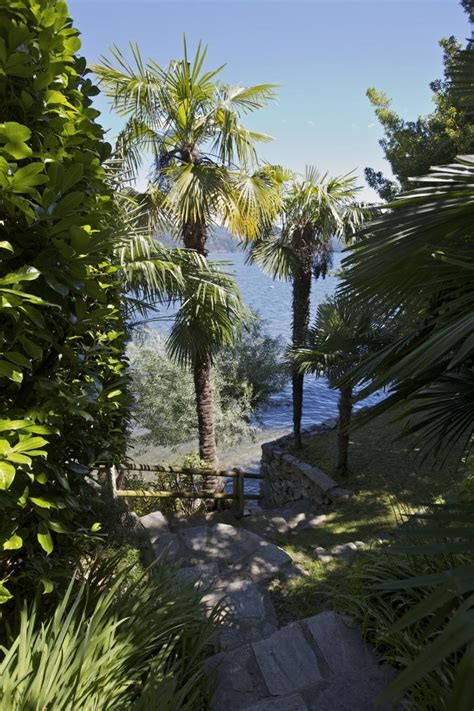 la terrazza lago maggiore ferienwohnung la terrazza 1 c cannobio lago maggiore